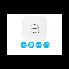 Wi-Tek WI-AP217