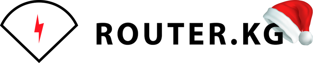Router.kg - IT услуги и продажа сетевого оборудования